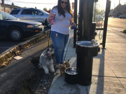 New hydration stations quench people and pups