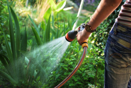 Outdoor Watering and Yard Care